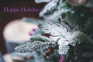 Happy Holidays! - Caris Roane Paranormal Romance Author